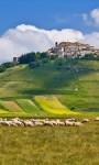 Pellegrinaggio in Umbria – seconda metà di Maggio