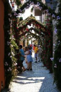 festa-dei fiori