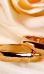 Immacolata concezione e anniversari di matrimonio – 8 Dicembre 2018