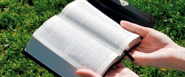 20-Bibbia-aperta