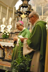 Vescovo-a-giovenzano-08