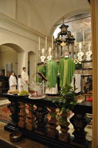 Vescovo-a-giovenzano-28